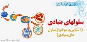 Sellolhaye-Bonyadi